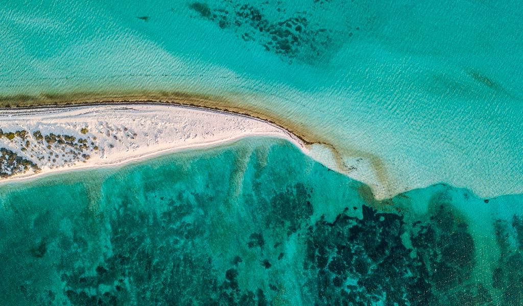 Защита океанов Oceana и Blancpain