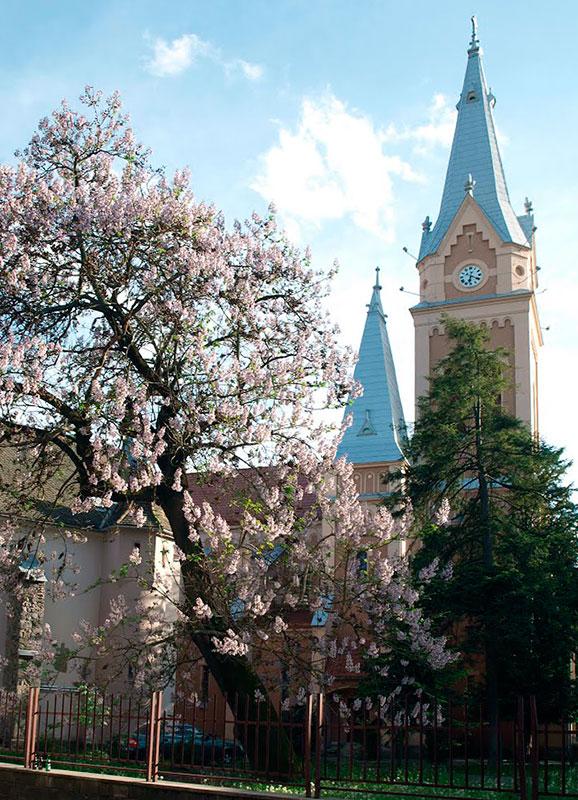Костел в Мукачево